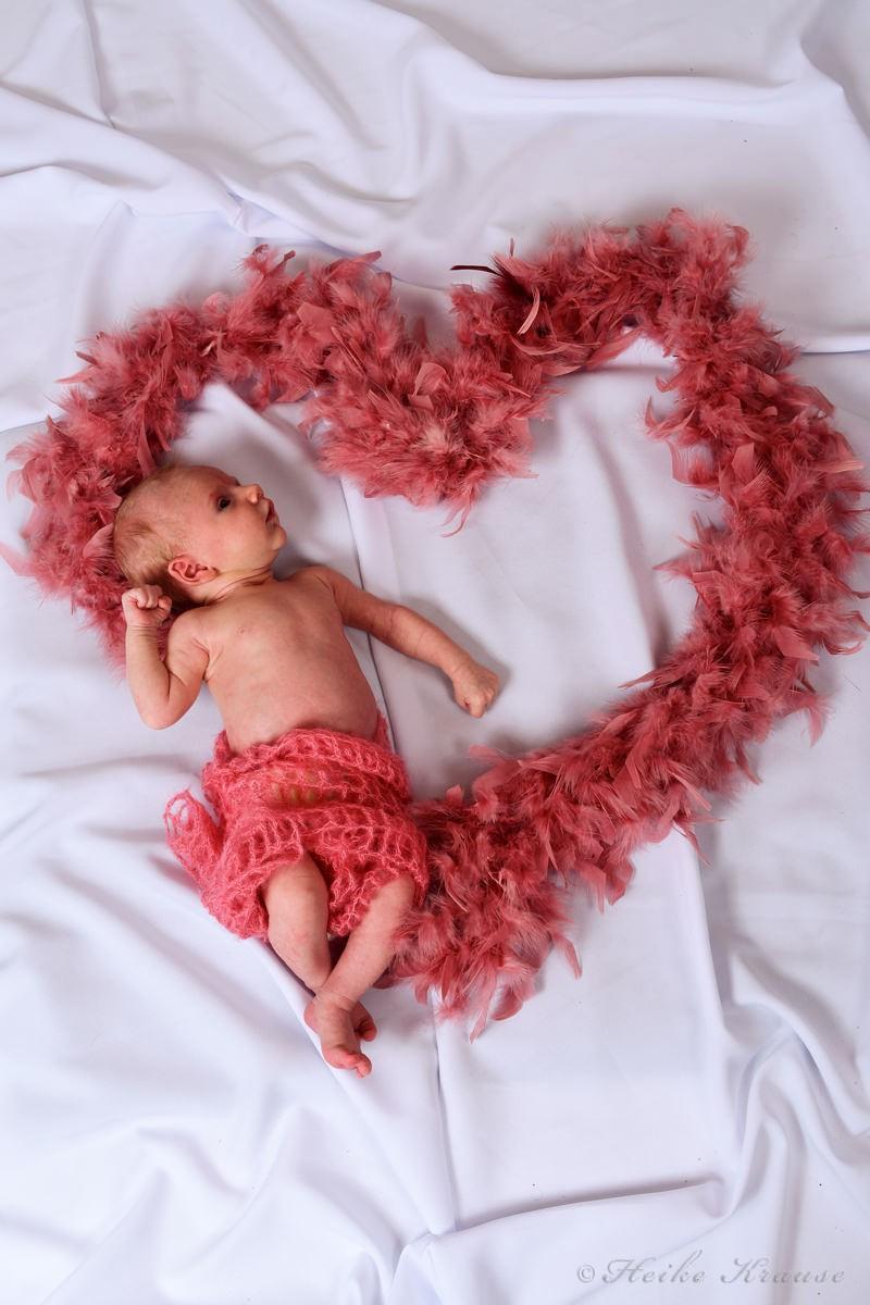 Fotograf Babys Bilder